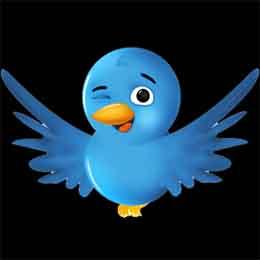 Twitter supera los 100 millones de usuarios
