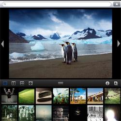 Getty Images lanza una nueva aplicación para el iPad