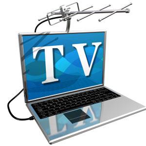 La televisión en la red conquista a los internautas