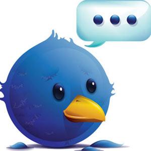 """Los """"twitteros"""" son los internautas más influyentes"""
