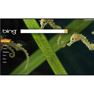 Bing podría añadir el botón