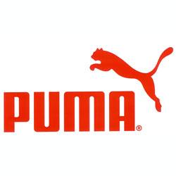 A Puma le llovieron los millones en 2010 y ahora quiere invertirlos en marketing y publicidad