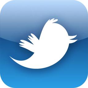 Menos de 20 millones de usuarios estadounidenses utilizaron Twitter en 2010