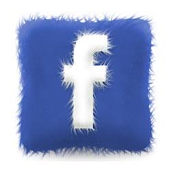 15 aplicaciones que darán valor añadido a tu página de fans en Facebook