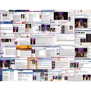 El emplazamiento en webs pequeñas y especializadas aumenta la efectividad de los anuncios