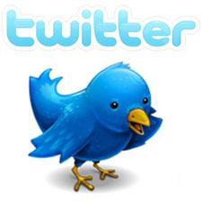Se espera que Twitter llegue a 150 millones de dólares en ingresos por publicidad este año