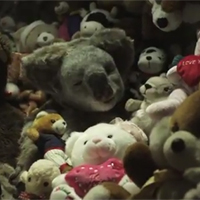 ¿Qué tienen en común un Koala y el Getafe F.C?