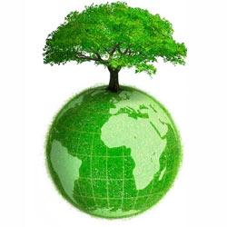 ¿Cuáles son las marcas más verdes del mundo?