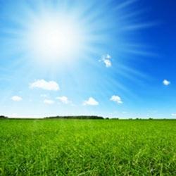 La verdad sobre el clima en la publicidad: el sol despierta el apetito por las compras del consumidor