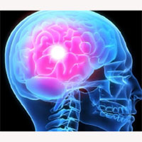 ¿Está acabando Google con nuestras neuronas?