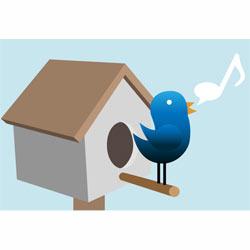 Twitter, de 0 a 200 millones de tweets en sólo 5 años
