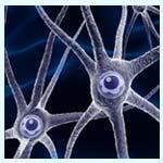 McCann se trae a Valencia a varios de los principales expertos en neuromarketing
