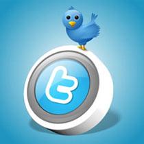 Los usuarios de Twitter ya tienen galería de imágenes en su perfil