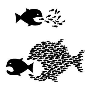 El pez grande y el pez chico