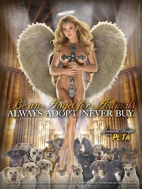 Los anuncios más polémicos en defensa de los animales
