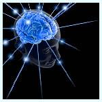 Animaciones en 3D para explicar y entender el funcionamiento del cerebro