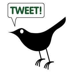 Twitter se hace con los derechos de la palabra