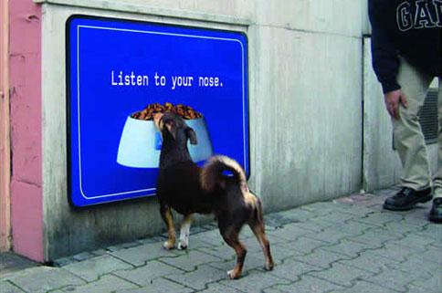 publicidad para perros y gatos cuando los anuncios no