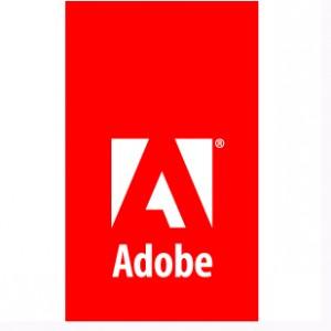 Adobe Audience Research proporciona datos precisos de audiencia para la venta de medios digitales