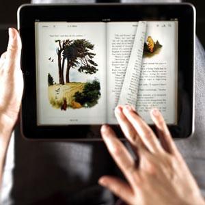 Cómo ha evolucionado la lectura online en 2011