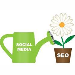 ¿Cómo influyen Facebook, Twitter y Google+ en el SEO?