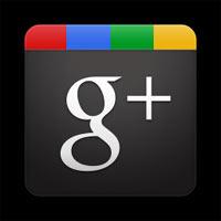 ¿Cómo es el usuario medio de Google+?