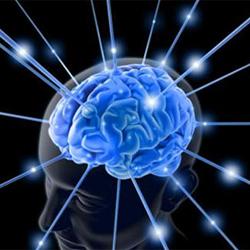 La neurociencia, ahora al servicio de la publicidad exterior