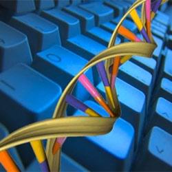 El ADN del director de marketing digital