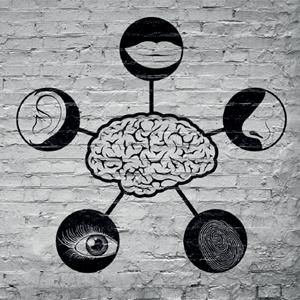 ¿Cómo funciona la mente de los profesionales de marketing?