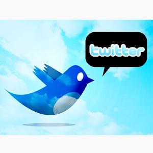 ¿Se puede ir de Twitter al cielo en 140 caracteres mediante el crowdsourcing?