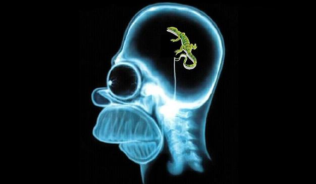 El cerebro reptil: ese gran aliado de la publicidad