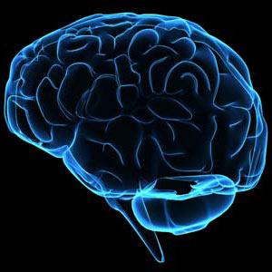 Las relaciones públicas requieren un viaje al interior del cerebro más creativo