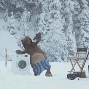Samsung nos demuestra en un divertidísimo anuncio de lavadoras que los osos también hacen la colada