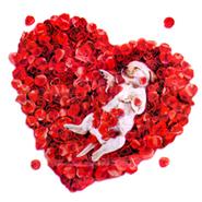 El 14 De Febrero Los Enamorados A Lo Largo Y Ancho Del Mundo Celebran Su Día.  Una Ocasión Perfecta Para Recordar A Esa Persona Especial Lo Que Sientes  Por ...