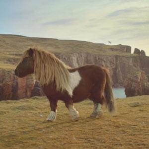 """Un anuncio de un pony bailando el """"moonwalk"""" se convierte en la nueva sensación viral de la red"""