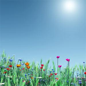 Llega la primavera y los presupuestos de marketing comienzan a florecer, según Warc