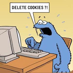 La AEPD presenta la primera guía en Europa sobre el uso de cookies