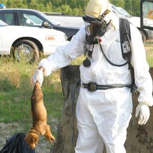 La organización por los derechos de los animales PETA, inmersa en un aluvión de críticas a través de las redes sociales
