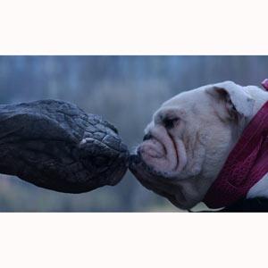 ¿Cómo encuentra una tortuga el amor en el siglo XXI? Channel 4 nos lo muestra en un divertido y tierno spot
