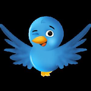 Por fin es posible buscar en Twitter cualquier tuit publicado desde 2006