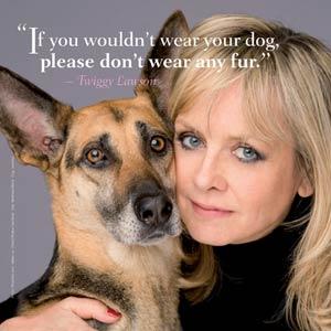 PETA y su original y distinguida publicidad