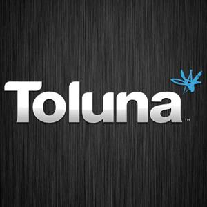 toluna (2)