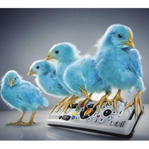 Tuitear viendo la televisión es en realidad como hacer zapping