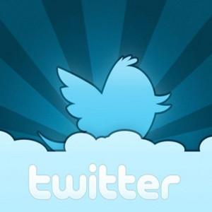 ¿Qué tipo de usuario de Twitter es? 11 tipos de twitteros para todos los gustos
