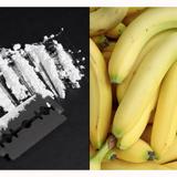 Escándalo en el supermercado: empleados de Aldi encuentran cocaína escondida entre los plátanos