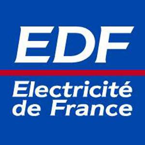 EDF, proveedor francés de energía, inicia un concurso de publicidad a nivel europeo