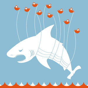 Los tiburones se vuelven 'tuiteros' para alertar de su propio peligro
