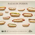 30 suculentos anuncios de perritos calientes para empacharse de creatividad