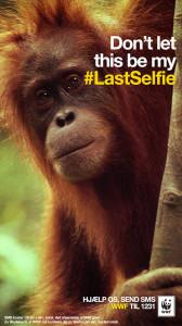 WWF compara en su última campaña los animales en peligro de extinción con las efímeras fotos de Snapchat