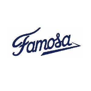 Famosa lanza su nueva tienda online